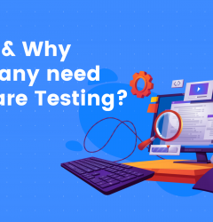 When and why company need software testing
