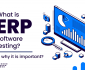 What is ERP Testing?